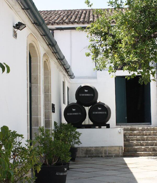 Wine tourism Alvaro Domecq - Terraselecta
