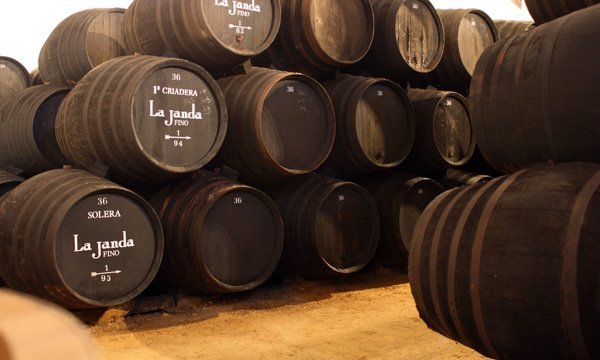 Barriles de la bodega de Álvaro Domecq